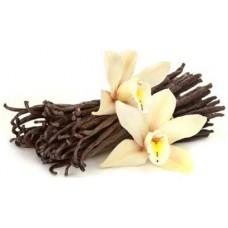 White Madagascar Vanilla